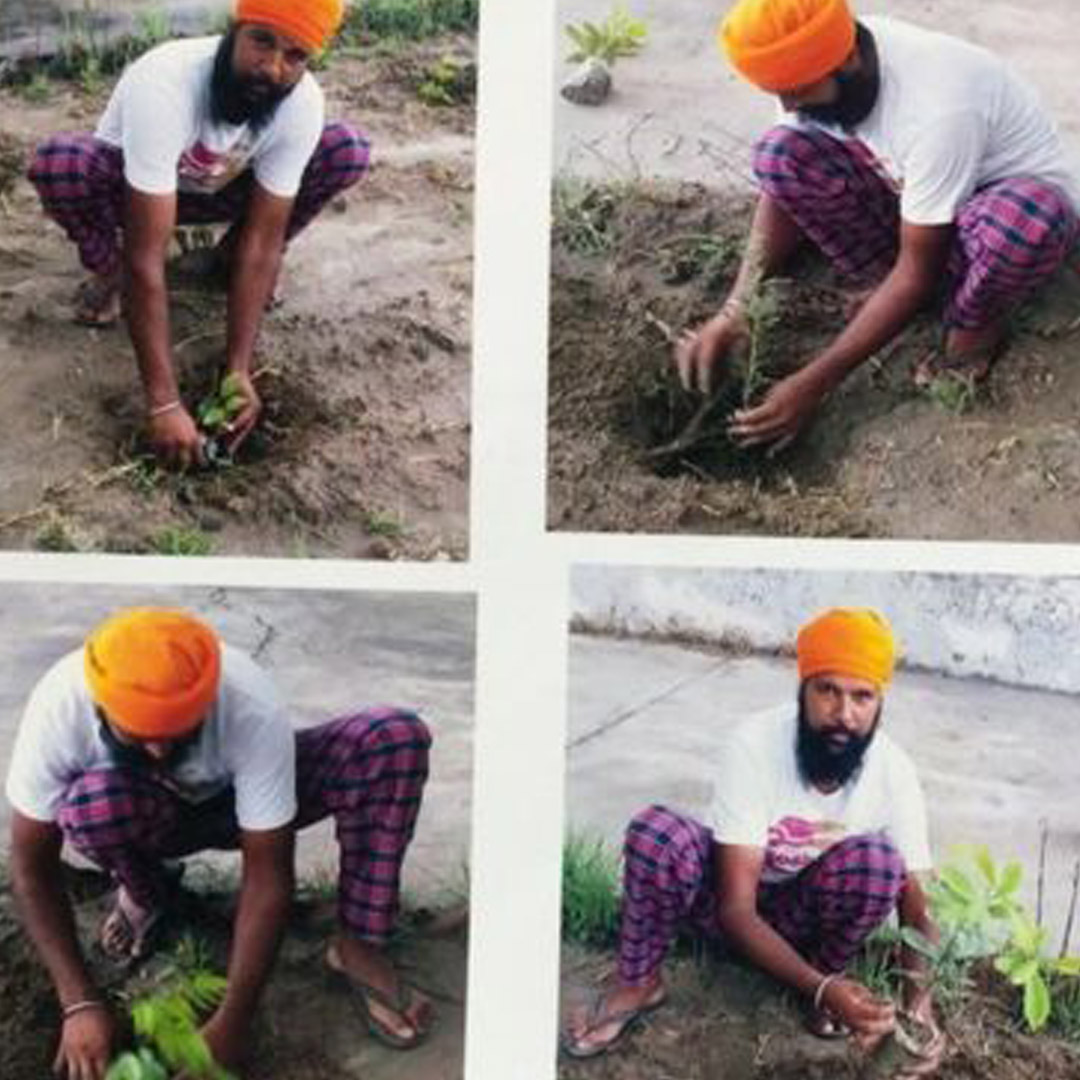 punjab india guns for plants eco balance lifestyle