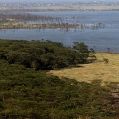 kenya replenishing their forests eco balance lifestyle