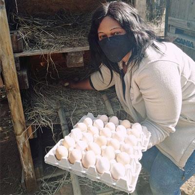 ebl-mhondoro-free-range eggs