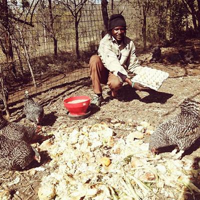 ebl-mhondoro-organic-vegetable-farming-02